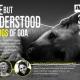 The free but misunderstood Street Dogs of Goa - Adv Norma Alvares & Dr Karlette Fernandes | #mondayfixgoa | 31.8 7.30 pm